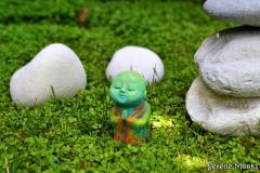 anshin_-_monk_meditating_praying_meditation_outdoors_-_serene_monks_-_green_-_buddha_nature_-_spiritual_edited