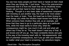 David_Icke_-_Quote_Consciousness_Spirituality_Spiritual_Education_Multidimensional_Heart_Chakra_Intuition