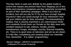 Michael_Tellinger_quote_spirituality_fear_media_ubuntu_contributionism_banks_insurance_2b