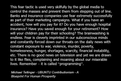 Michael_Tellinger_quote_spirituality_fear_media_ubuntu_contributionism_banks_insurance_2