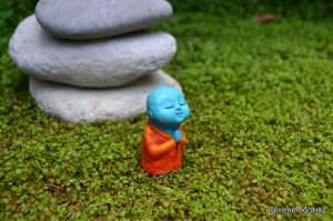 c45-anshin - monk meditating praying meditation - serene monks - blue orange.JPG